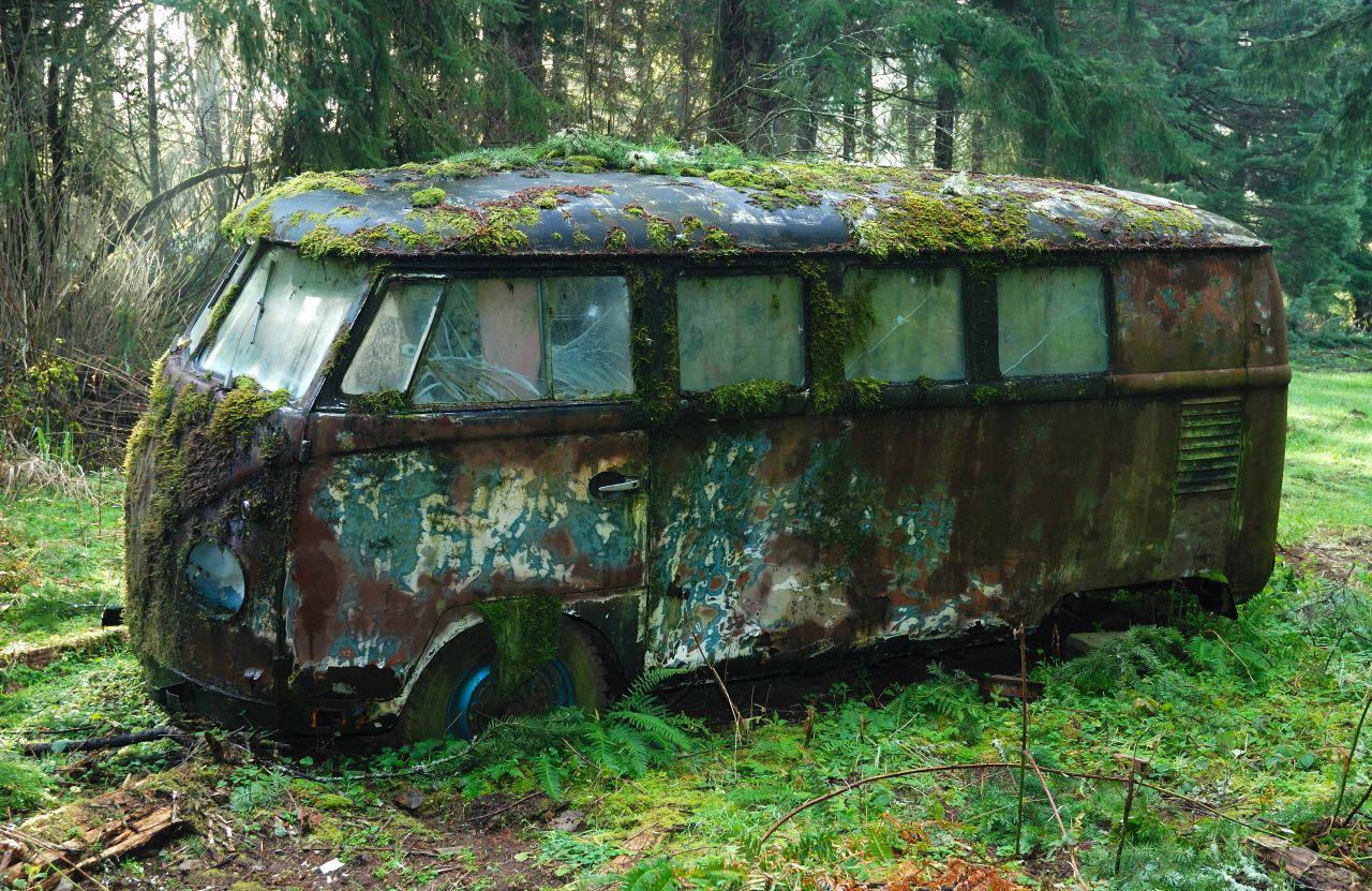 world  moss mossy vw bus photo