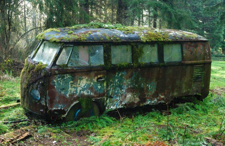 mossy-vw-bus